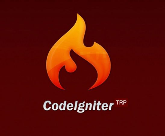 How to use sessions and other libraries in codeigniter?