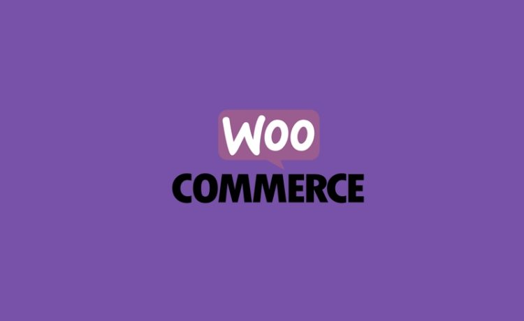 Woocommerce checkout page notices - therichpost