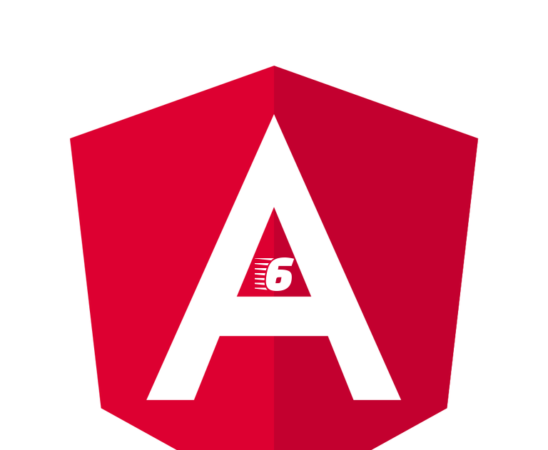 Angular 6 Material Datatables example with Php Mysql data
