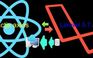 reactjs with laravel api call