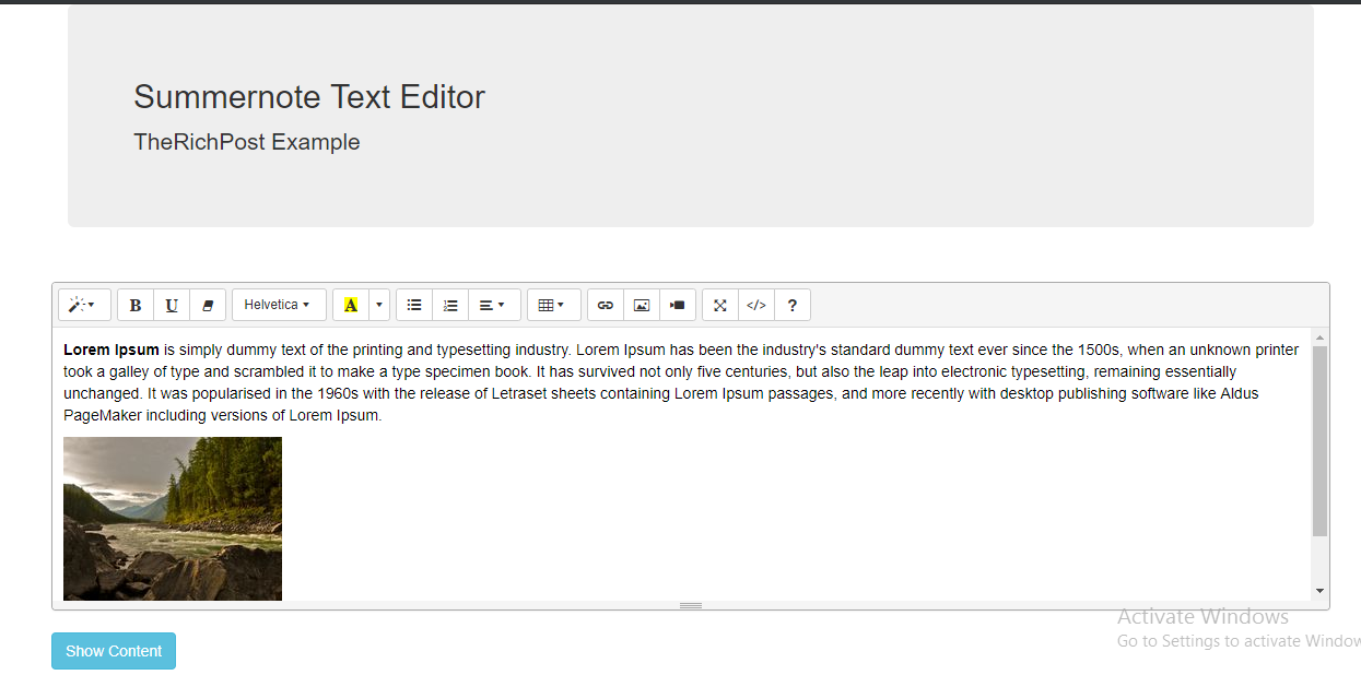 Laravel - WYSIWYG Editor Summernote With Dynamic Content - therichpost