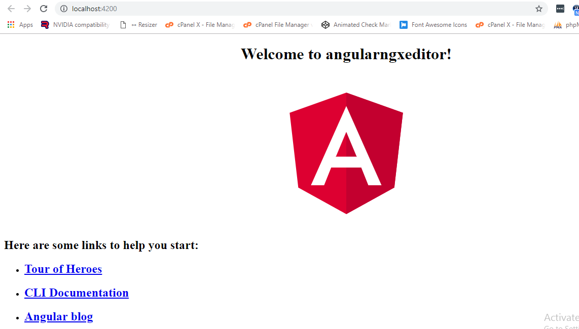 angular_run_projecy
