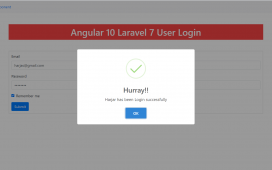 Angular 10 Laravel 7 User Login
