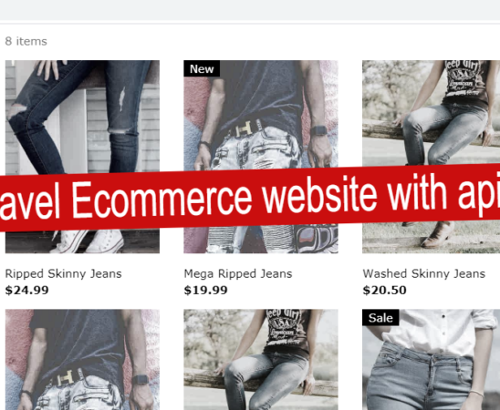 Angular laravel Ecommerce website