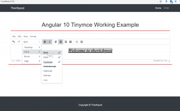 Angular 10 Tinymce Working Example