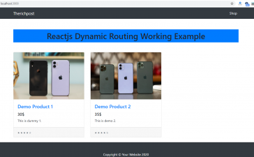Reactjs Dynamic Routing Working Tutorial