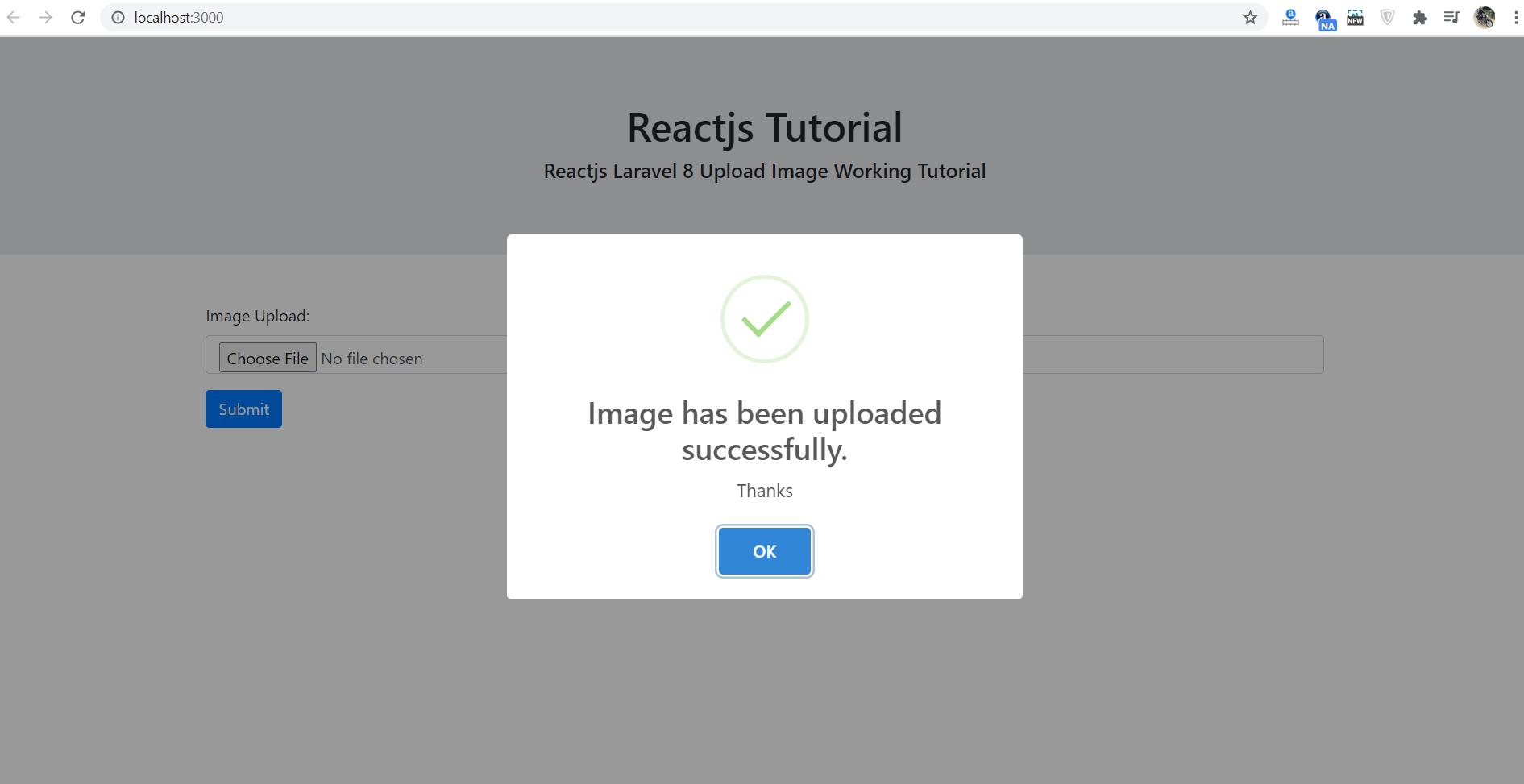 Reactjs Laravel 8 Image Upload Working Tutorial