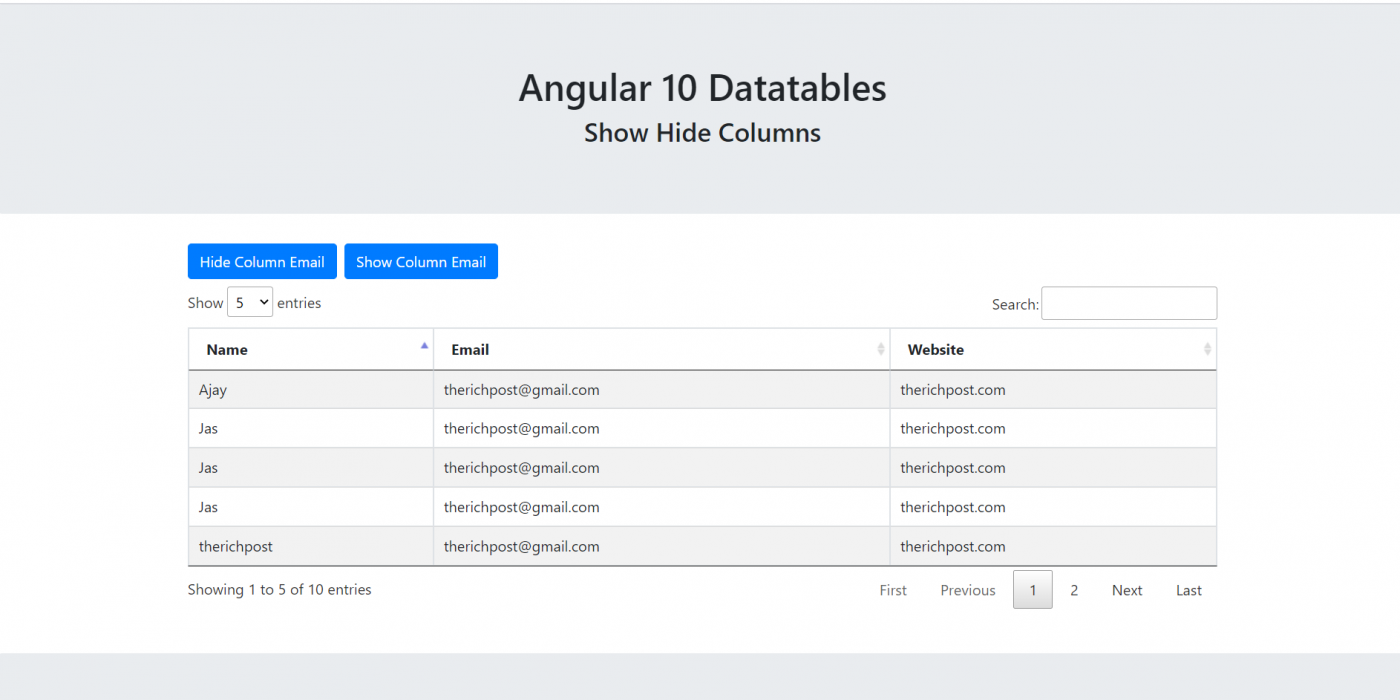 Angular 10 Datatable Show Hide Column Working Demo with Source Code