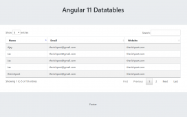 Angular 11 Datatable Working Example