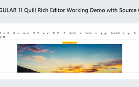Angular 11 Quill Editor Working Demo with Source Code
