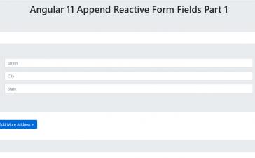 Angular 11 Append Reactive Form Fields Part 1
