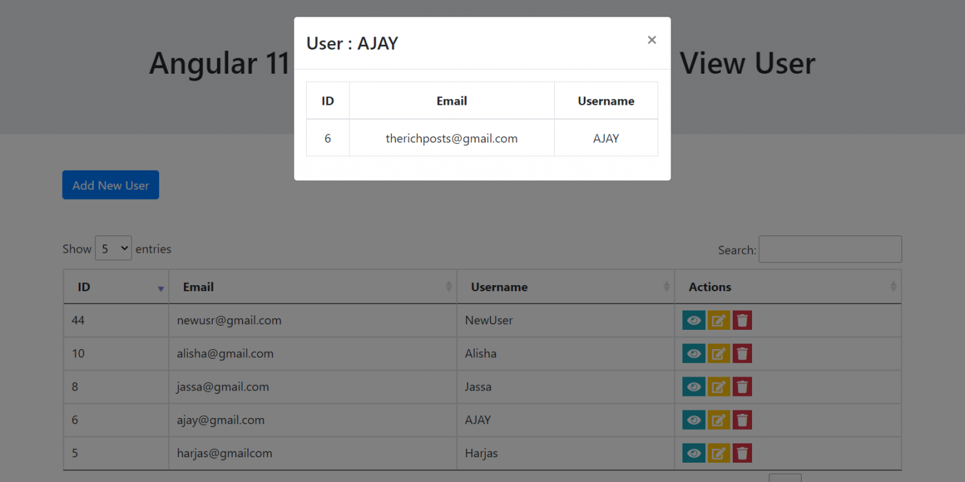 Angular 11 Crud Tutorial with Service - View User