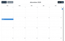 Angular 11 Fullcalendar with Multi Language