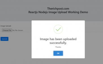 Reactjs Nodejs Image Upload Working Demo