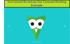 Vue Laravel 8 Bootstrap 4 Owl Carousel Working Example