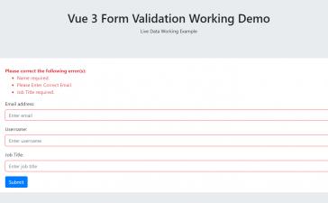 Vue 3 - Vuejs Form Validation Working Demo with Source Code