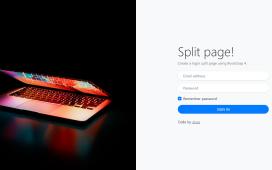 Vue Js Bootstrap 4 Login Split Page Template Free