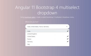 Angular 11 Multiselect Dropdown Working