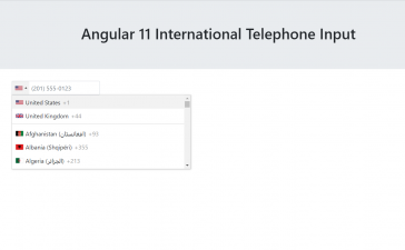Angular 11 International Telephone Input