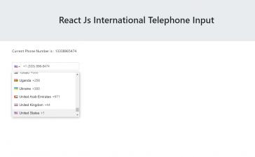 Reactjs International Telephone Input