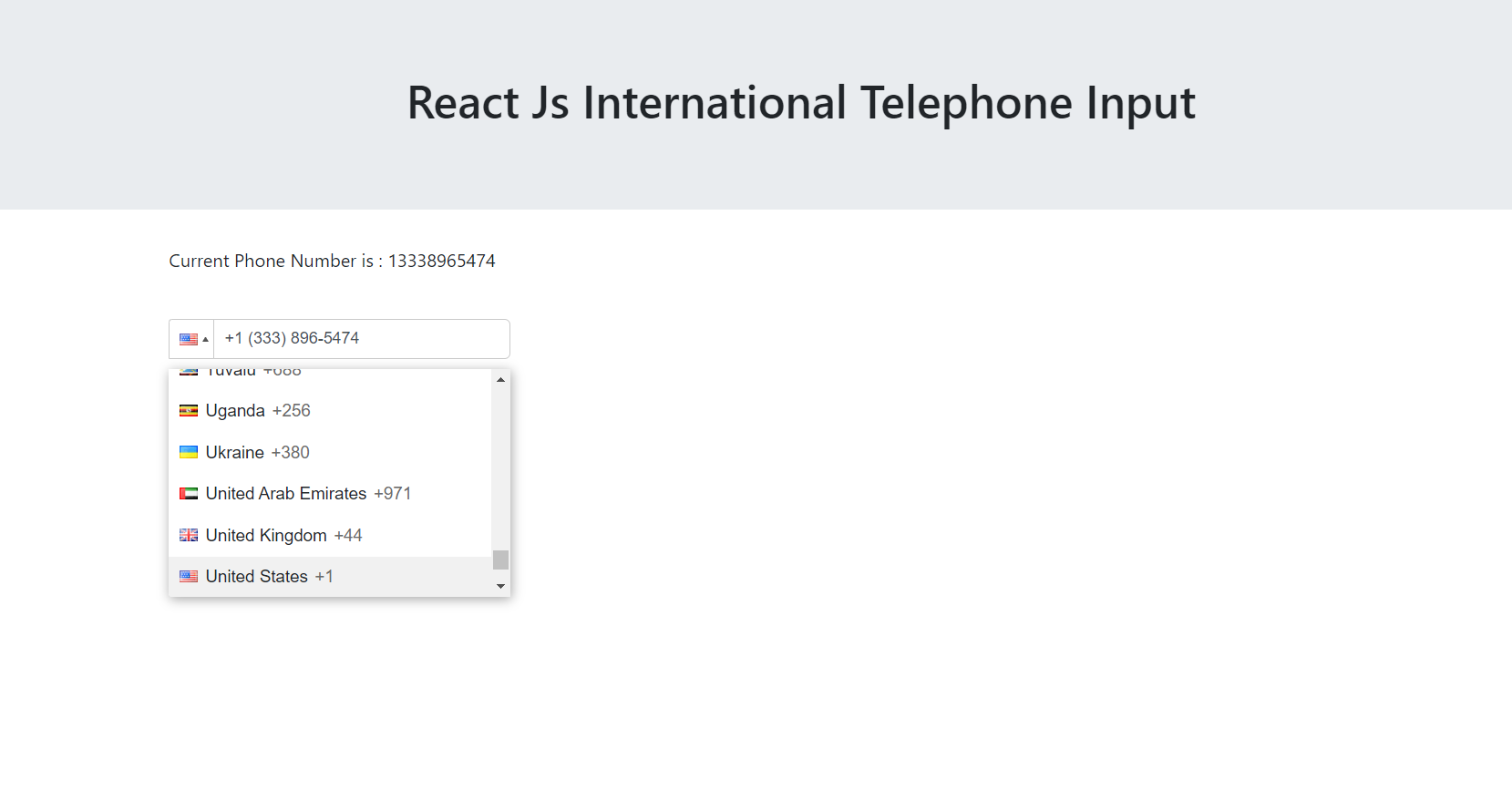 Reactjs International Telephone Input