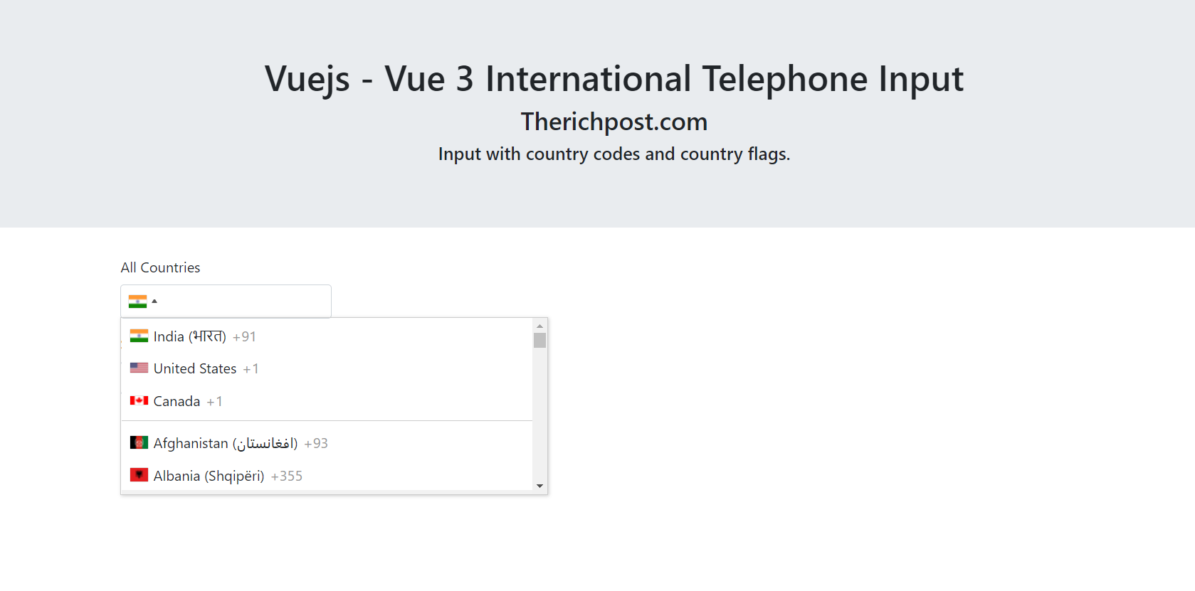 Vuejs International Telephone Input - Vue 3