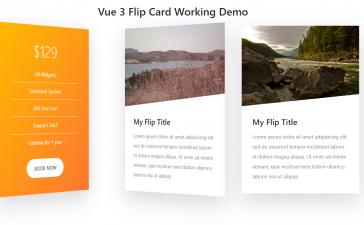 Vuejs - Vue 3 Flip Card Working Demo