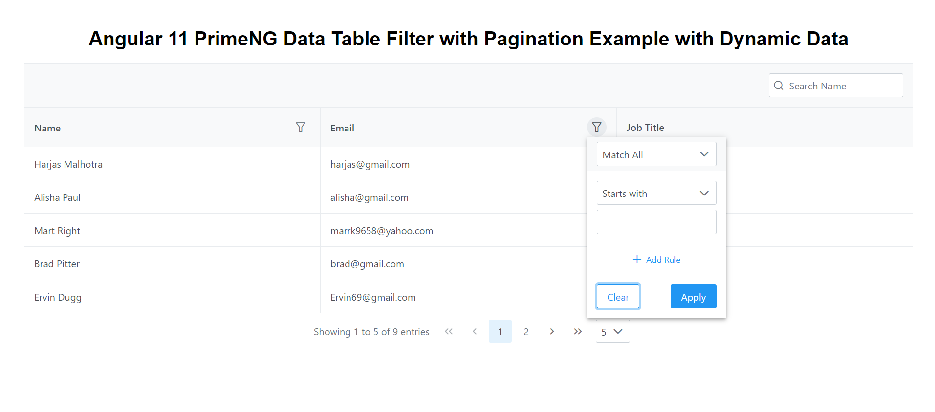 Angular 11 PrimeNG Data Table Filter Pagination Working Example with Dynamic Data