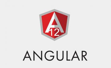 How to update angular version to 12?
