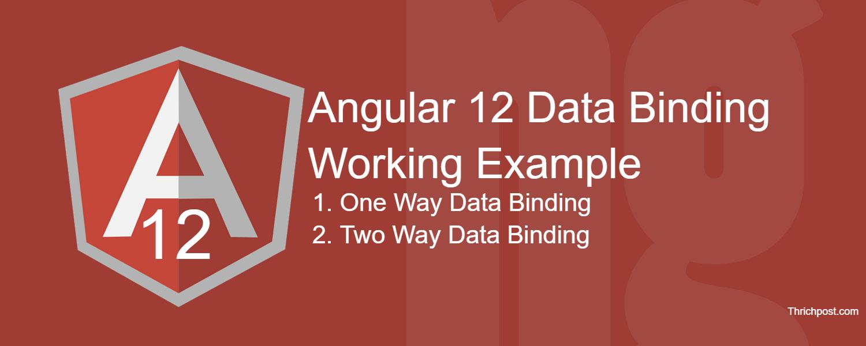 Angular 12 Data Binding Working Tutorial