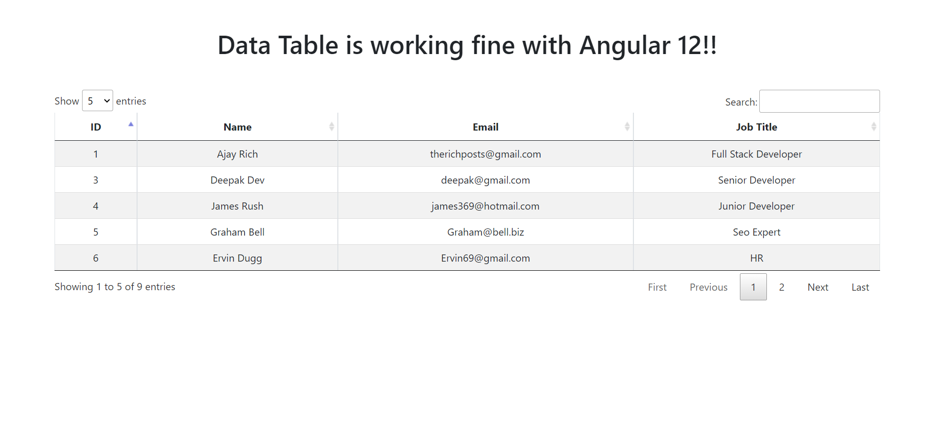 Angular 12 Datatable with Dynamic Data