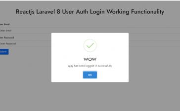 Reactjs Laravel 8 AUTH User Login Working Example