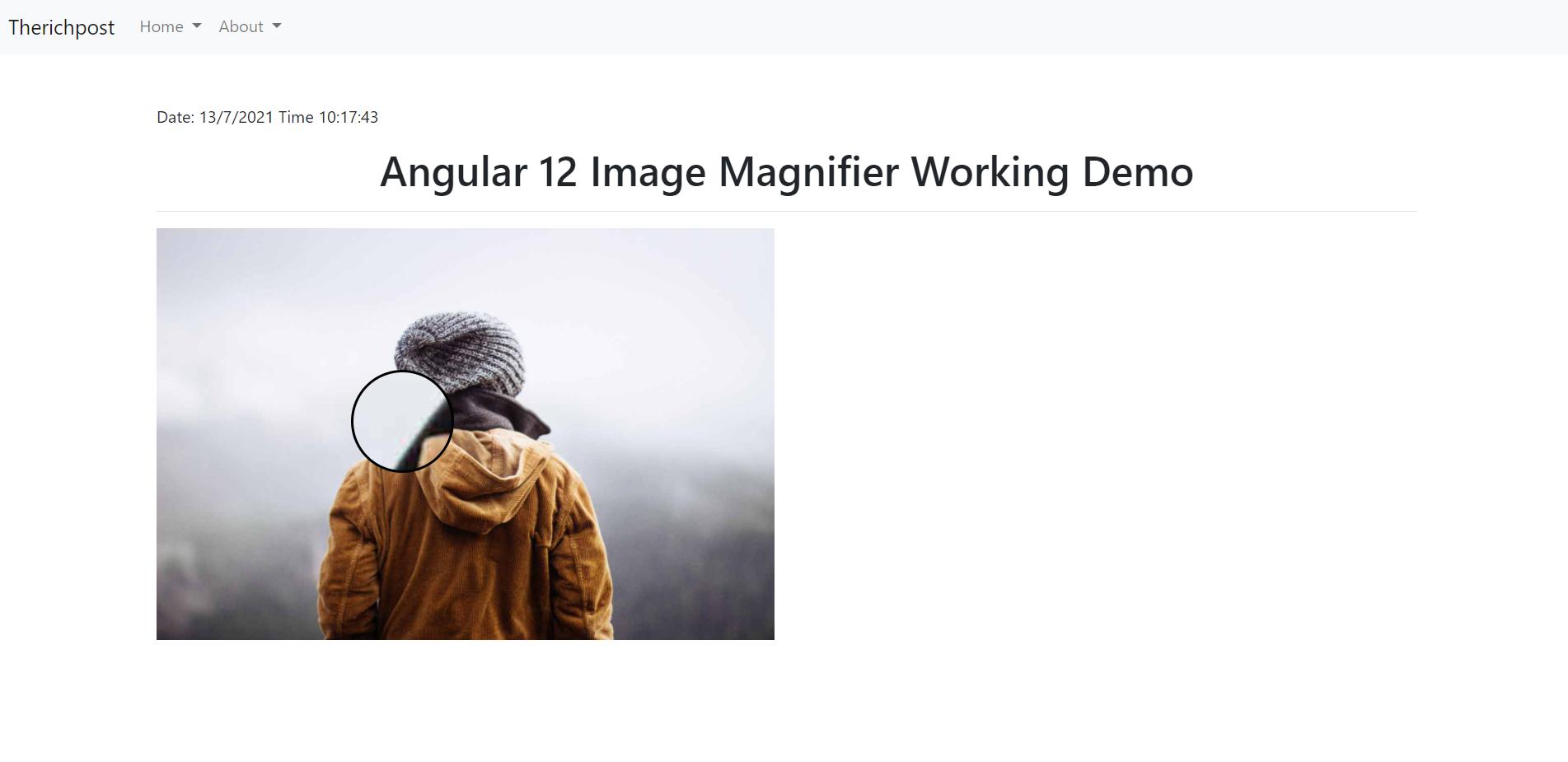 Angular 12 Image Magnifier Working Functionality