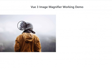 Vue 3 Image Magnifier Working Functionality
