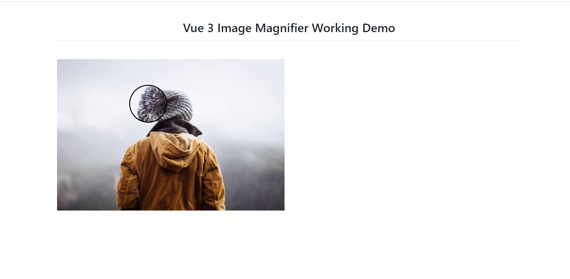 Vue 3 Image Magnifier Working Functionality - Therichpost