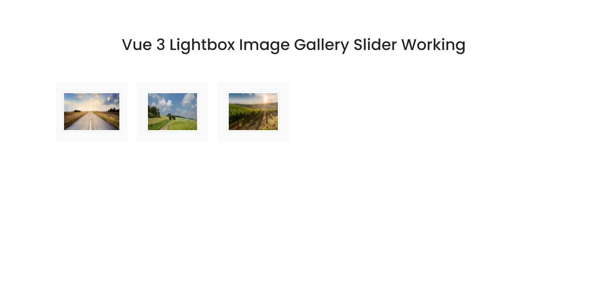 Vue 3 Lightbox Image Gallery Slider Working Functionality