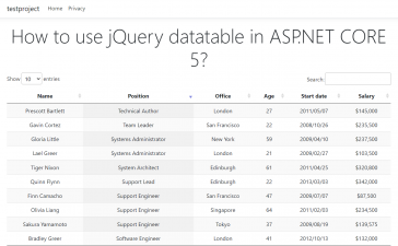 How to use jQuery Datatable in ASP.NET CORE 5?