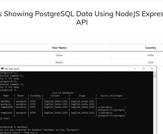 Reactjs Showing PostgreSQL Data Using NodeJS Express WEB API