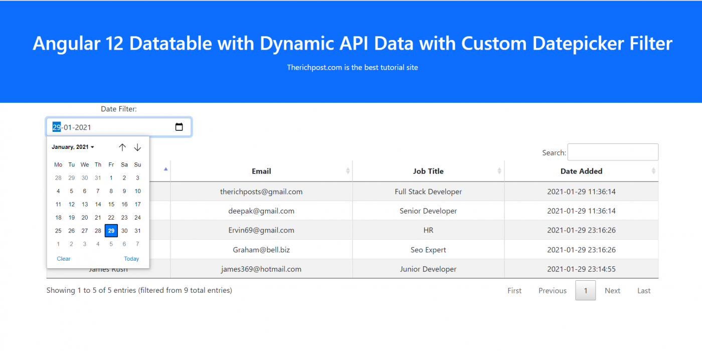 Angular 12 Datatable with Dynamic API Data with Custom Datepicker Filter