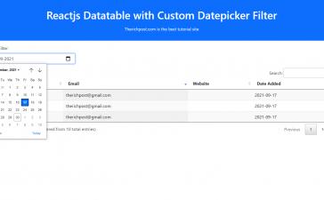 Reactjs Datatable with Custom Datepicker Filter
